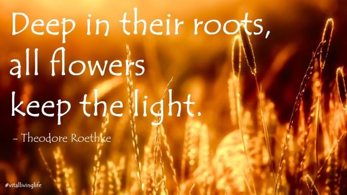 flowerslight